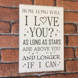 Friend-Sign-3-How-Long-Wil-I-Love-You-As-Long-As-Stars-Are-Above-You-And-Longer-If-I-Can